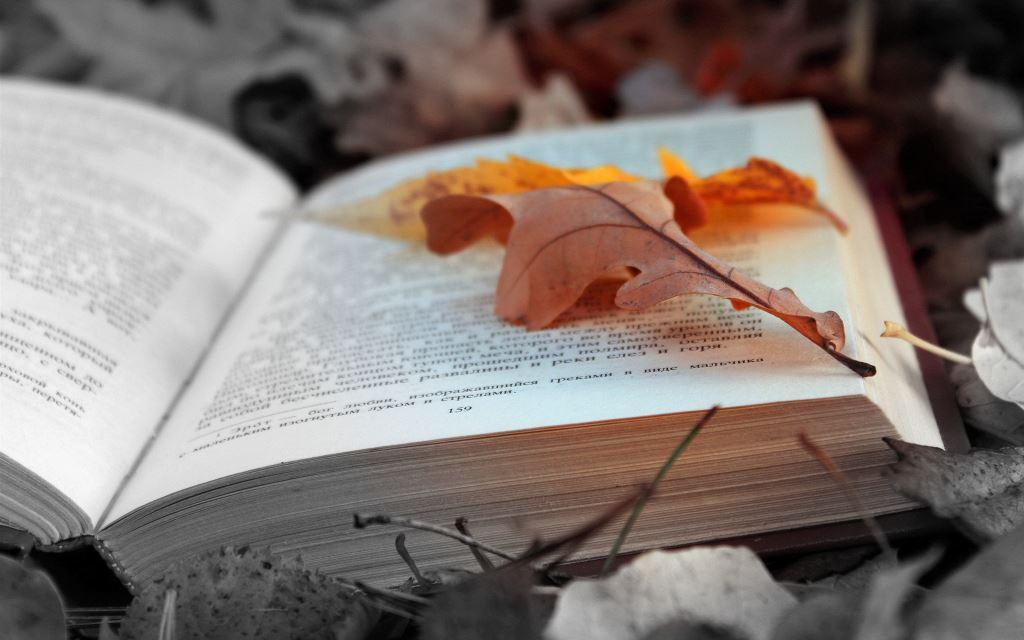 Restauration de livre et bande déssinée